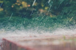 heavy rain soaks the ground and can result in septic problems